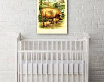 Pig and Piglets, Children's Illustrations, Farm Animal Canvas, Pigs on Canvas, Baby Room, Children's Room, Baby Wall Art, Baby Wall Decor