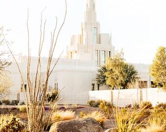 Phoenix Temple 4