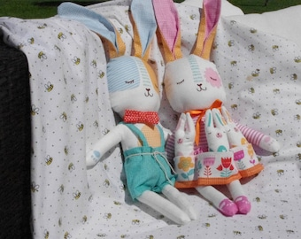 Twin Bunny Rabbits
