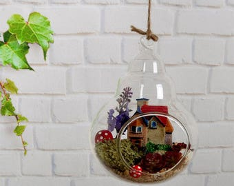 Aloe Microlandschaft Glass Plant Vase Stand Holder Terrarium Container Tool