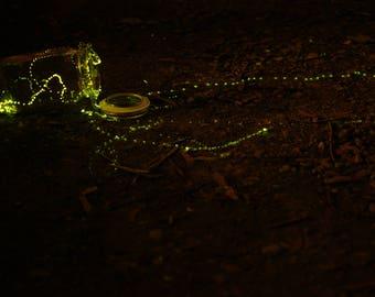 Fireflies No. 1
