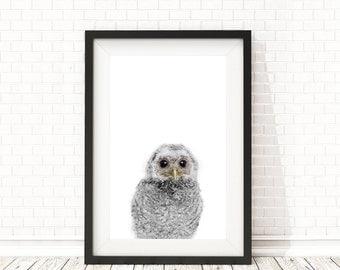 Baby owl print, Nursery decor, PRINTABLE wall art, Baby owl poster, Kids art, Nursery Animal Wall Art, Animal art, Owl wall art, Baby animal