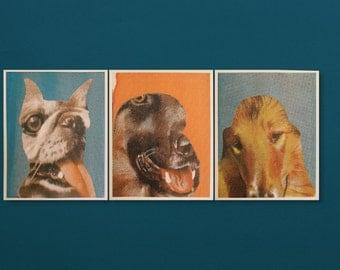 Dog Collages - Evil/Guard/Saint - Multicolor Screenprints