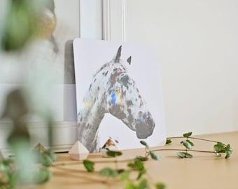spotted horse photograph, horse photography, horse wall art, horse print, boho home decor, farmhouse decor, rustic decor, mini print