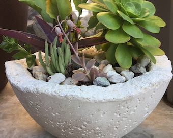 Medium Bowl Planter