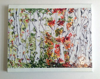Mounted Print, Birch Trees, Woodland Nursery, Ready to Hang Art, Living Room Decor, Four Seasons, Enchanted Forest, Canvas Mounted, 8x10