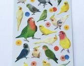 Cute Real Tropical Birds / Lovebirds / Parrots / Colorful Birds Photo Stickers From Japan