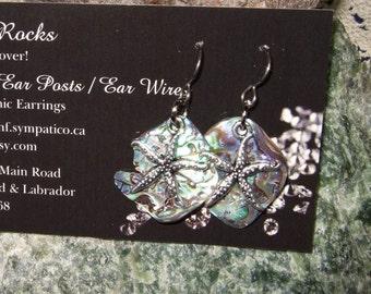 Paua Shell Starfish Dangle Earrings Earings Titanium Ear Wires Handmade in Newfoundland Hypo Allergenic New Zealand