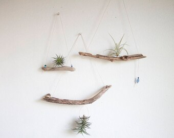 Driftwood Air Plant Display, Hanging Air Planter, Small, Boho Beach Decor