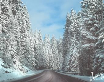 Landscape Photography | Winter Photo | Oregon Photo | Snow | Blue | Travel | Forest Photograph | Cascade Mountains | Wanderlust