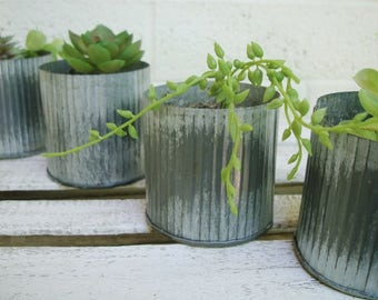 CORRUGATED TIN Succulent PLANTERS: 4 Available Distressed Silver Planting Containers, Storage Tins