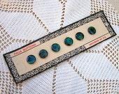 Vintage New Zealand Souvenir Paua Shell Buttons on Original Card, Abalone Shell Buttons, Souvenir Button Card
