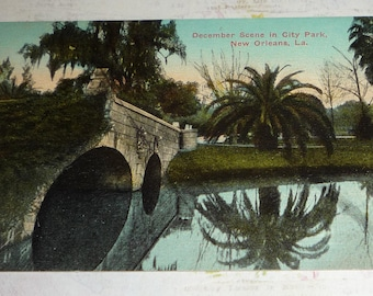 December Scene in City Park, New Orleans, Louisiana Antique View Postcard UNUSED 1910s