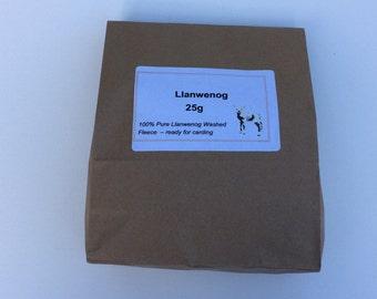 Llanwenog Fleece - 25 grams