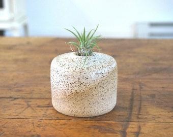 White Speckled Ceramic Vase ~ READY TO SHIP!!!