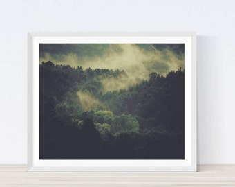 Forest photography, forest wall art, nature art, forest art, forest photo, nature prints, nature print, instant download, forest, tree print