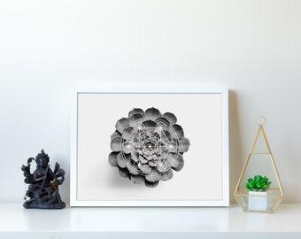 Black Succulent Digital Print, Large Succulent Decor, Cactus Poster, Cactus Photo Print, Monochrome Poster, Viking Symbol, Simple Gift Ideas