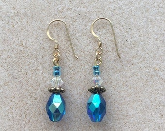 Blue and Clear Crystal Earrings