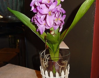 Purple Hyacinth Blooming Bulb with Fence Accent 11inch