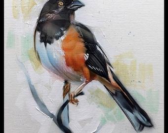 Eastern Towhee Acrylic Painting Original Art