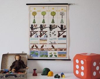 SALe Vintage 1950s 1960s German pull down Chart * Nature CHANGE OF SEASONS * Jaeger & Co. * Mid Century Decoration * Children's room * Retro
