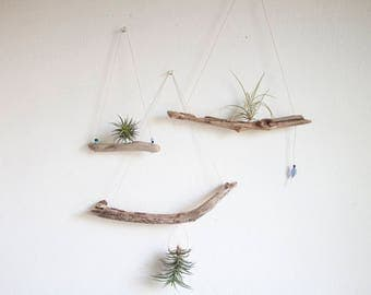 Driftwood Air Plant Display, Small Hanging Air Planter, Boho Beach House Decor, Summer Airplant Garden