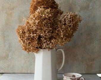 Dried Hydrangeas/ 10 Stems / Brown, Tan, Antique - Wedding -Organic