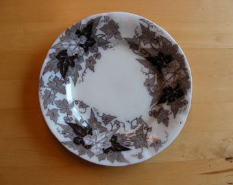 Vintage Bryonia black and white bread, dessert, salad plate