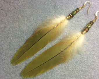 Olive green red-fronted macaw feather earrings adorned with olive green Czech glass beads.