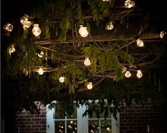 Festoon Lights with 20 Bulbs - LAFE02