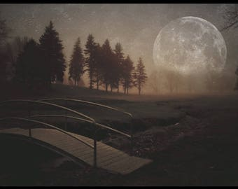 Landscape - Erie Pa, moon, bridge, fog, golf course, night, trees, creek, photography