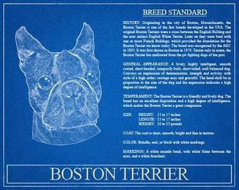 Boston Terrier Portrait / Boston Terrier Art / Boston Terrier Wall Art / Boston Terrier Print / Boston Terrier Gift