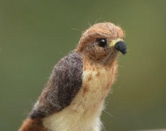Hawk mini  needle felted handmade wool bird