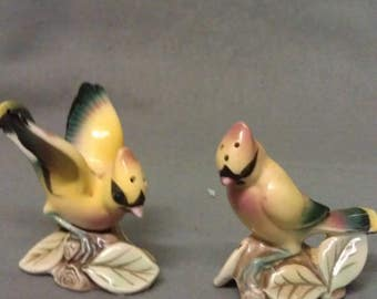 Yellow Green and Pink Birds with Colorful Faces and Bodies Salt and.Pepper Shaker Set on Leaves and Limb