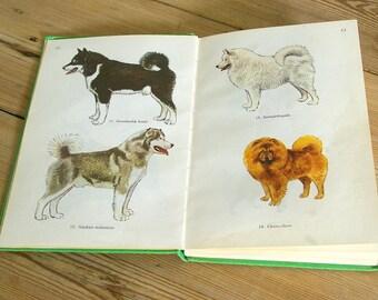 Vintage dog book guide.Vintage dog illustrations.Vintage dog book.Gift dog lover.Book pages dogs.Home decor.Wall decor collage.Journaling