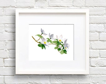 Dogwood Flowers Art Print - Kitchen Wall Decor - Watercolor Painting