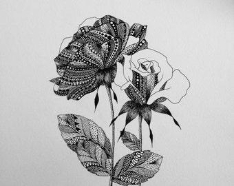 Original Botanical Illustration of Two Roses