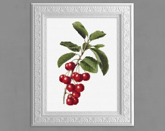 Modern Cross Stitch Pattern, Cherries Cross Stitch Pattern, Cherry Cross Stitch Chart, Fruit Embroidery, 14 ct, Red Cherries Xstitch, cs008