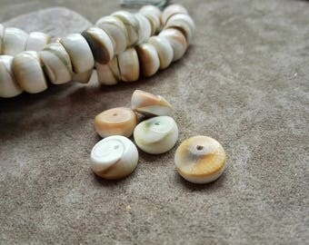 Sea Shell Beads Natural Shell Beads 25 pcs Conch shell beads