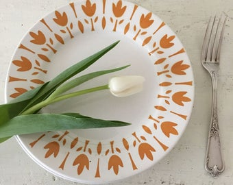 Vintage French set of 5 ironstone dinner plates