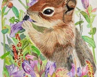 Baby Squirrel Watercolor