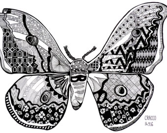 BUTTERFLY (animal, insect, illustration with black ink, patterns) print