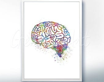 Brain Watercolor Art Print  - Brain Anatomy Watercolor Art Painting - Anatomy Poster - Science Art - Anatomy Art