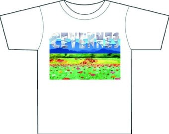 CEVENNES storm sky mountains & meadows tee-shirt, gift or him, plus R L Stevenson travel quote if requested