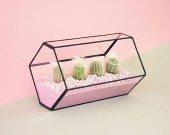 Terrarium kit etsy - Kit terrarium plante ...