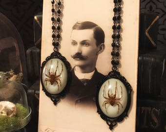 Victorian Spider Rosary, Taxidermy, Insect Jewelry, Real Spider, Spider Necklace, Victorian, Memento Mori, Gothic Jewelry