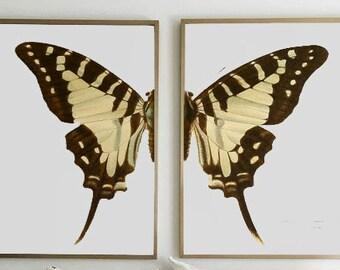Poster, Butterfly, Printable Art, Prints,  Wall Art, Art, Home Decor, Digital Prints, Instant Download, Bedroom Decor, Print Set.