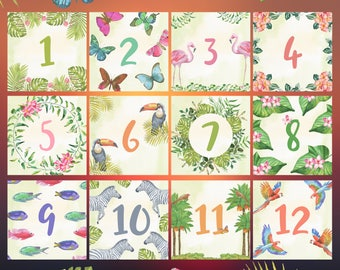 "Baby milestone cards ""Safari"" / 1-12 months birthday photo props"