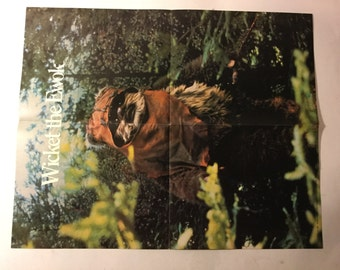 Vintage Star Wars Ewok Wicket Fold out Movie Poster 1983