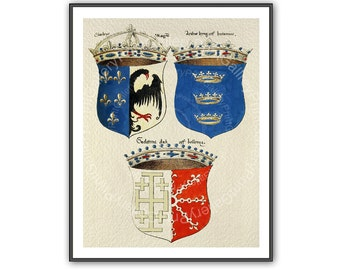 Renaissance Heraldry Print Heraldic Shields Coat of Arms European Medieval Crowns Crest Wall Art Man Cave Art Decor Antique Maritime ap 159